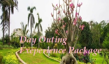 Day Outing Experience
